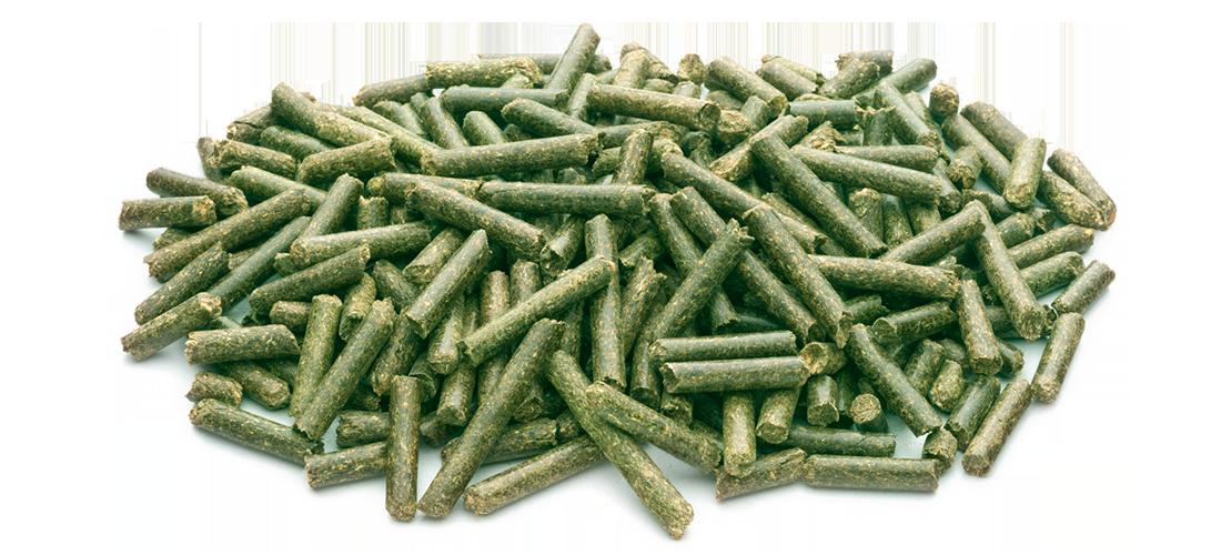 Luzerne pellets